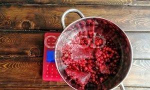 Брусничный влажный зефир без сахара рецепт шаг 4