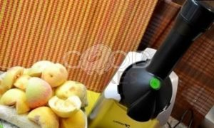 Яблочно-банановое мороженое рецепт шаг 1